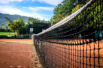tenis-pstruzi-15