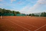 tenis-pstruzi-75