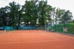 tenis-pstruzi-80